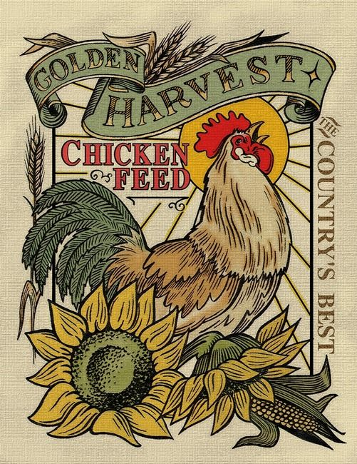 Chicken Feed - chicken art that's fun to look at because of the lines, colors, and symmetry.