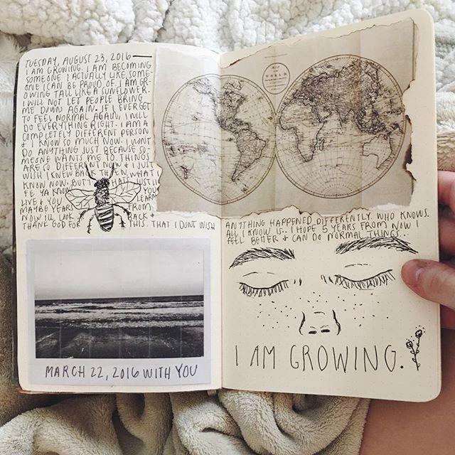 I am growing (ps I know I've been | WEBSTA - Instagram Analytics