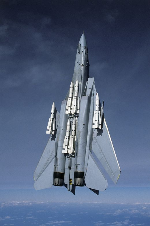 F-14 Tomcat showing of its Phoenix missiles