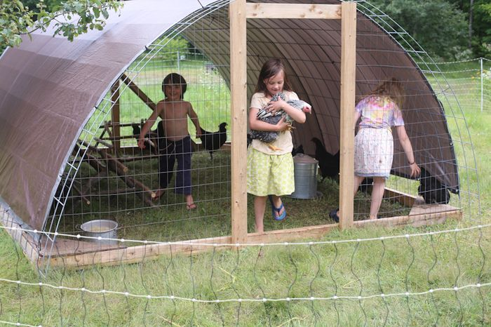 hoop house for chickens/broilers (but a little smaller for A's 4-H project.)
