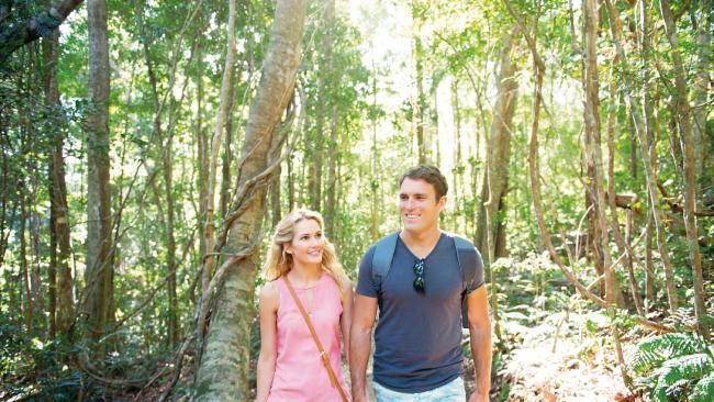 SUNSHINE COAST: 9 free things to do on Queensland's Sunshine coast | The Courier-Mail