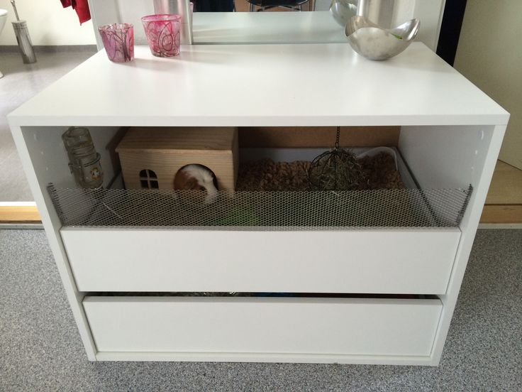 1000 images about guinea pig cages on pinterest guinea for Diy c c guinea pig cage
