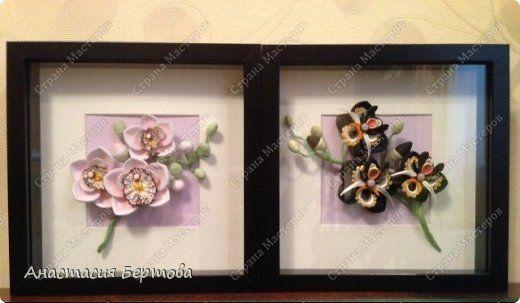 Всем доброго времени! Собрала маленькую веточку орхидеи. Сами цветы белые, лепестки тонированы пастелью. Формат 23*23 см, бумажные полосы 3 и 1,5 мм, фон - тонированная бумага. фото 10
