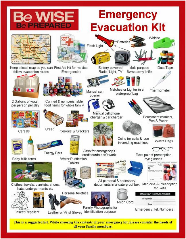 (News & Editorial/Lists of items to have ahead of a disaster) The following lists are some things you should have in storage before an emergency grid down, war scenario, petroleum energy crisis...