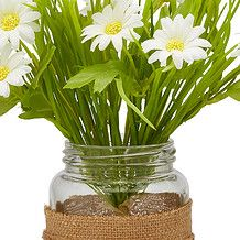 Daisy Posy In Jar