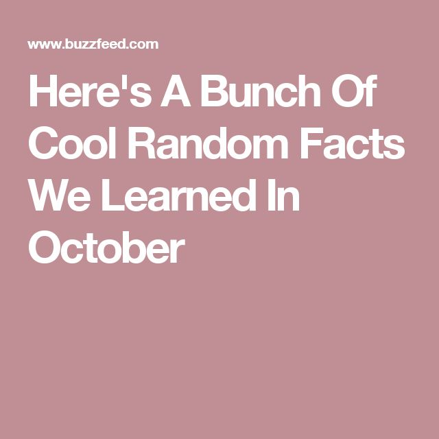 Here's A Bunch Of Cool Random Facts We Learned In October