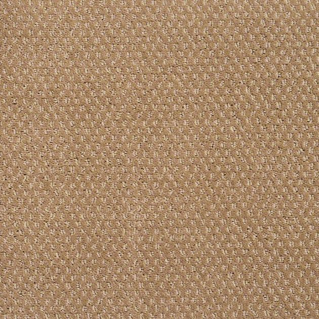 Carpet simply fundamental pattern tv123 trail dust for What carpet should i buy