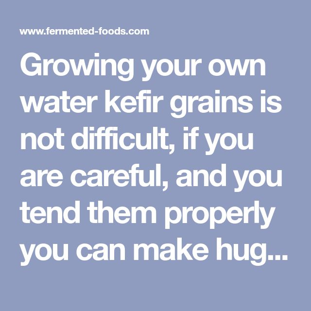 Growing your own water kefir grains is not difficult, if you are careful, and you tend them properly you can make huge quantities of tibicos, the water kefir grains. You need a few tibicos, quality water, sugar, and various fruits. To improve the process, you may also add minerals to your water.