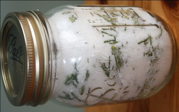 - In Salt or Sugar To preserve herbs in sugar or salt, simply layer the fresh herbs with either in a sealable jar. You can use both the salt (or sugar) and the herbs for seasoning. Some herbs naturally make great herbal sugars… lavender, mint, rosemary, lemon balm. Other make terrific herbal salts, such as basil