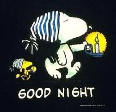 Snoopy and Woodstock say good night