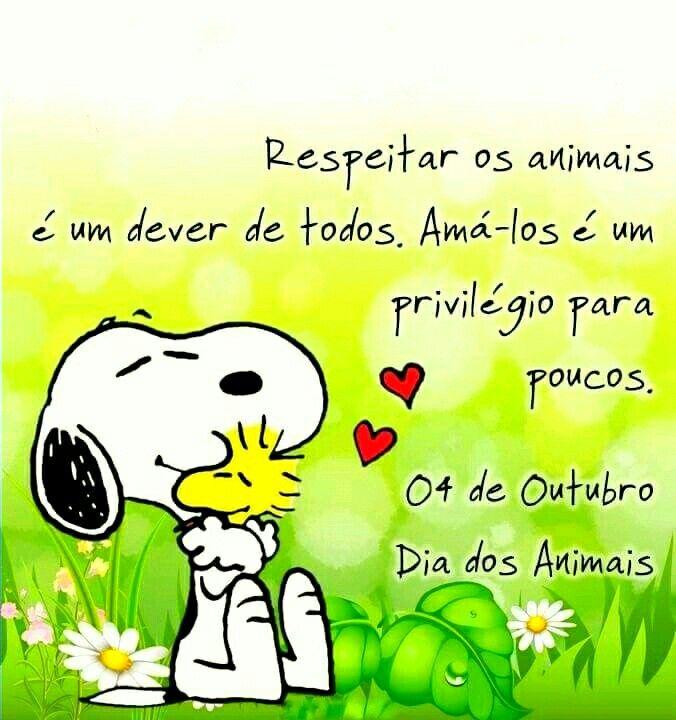 4 De Outubro Dia Dos Animais Dia Dos Animais Frases E Mensagens