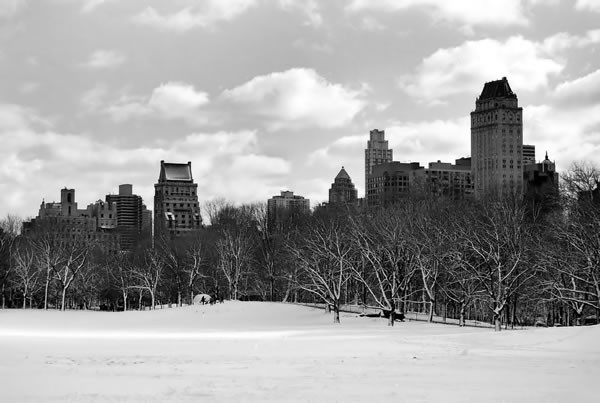 modern canvas - free worldwide shipping - Central Park Winter, $199.00 (http://www.moderncanvas.com.au/central-park-winter/)