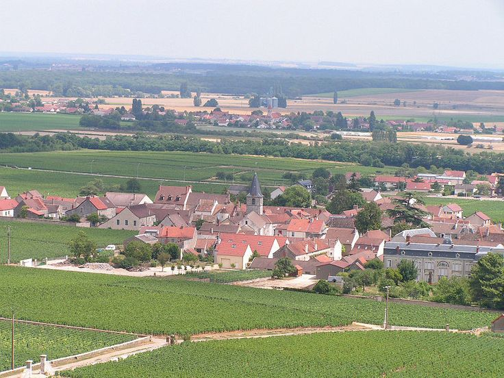 Vosne Romanee is a village in the northern section of Burgundy where my favorite red wines are produced.