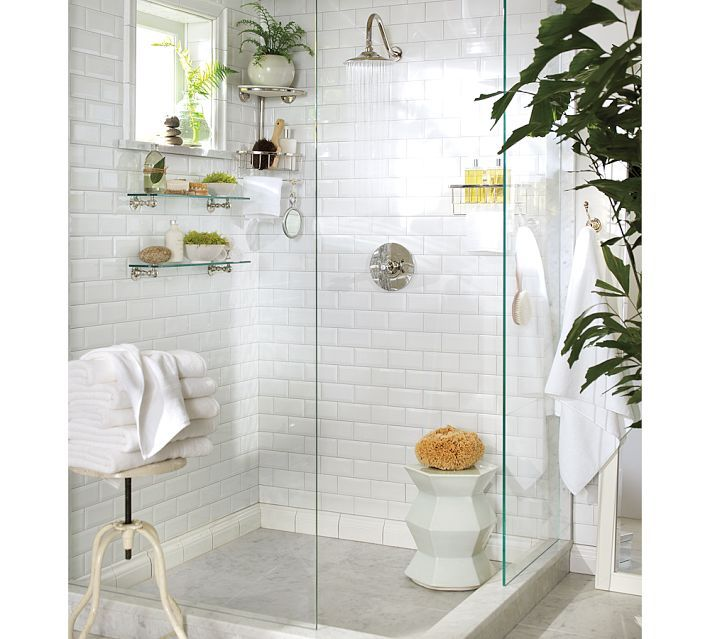 I think I want plants in my shower