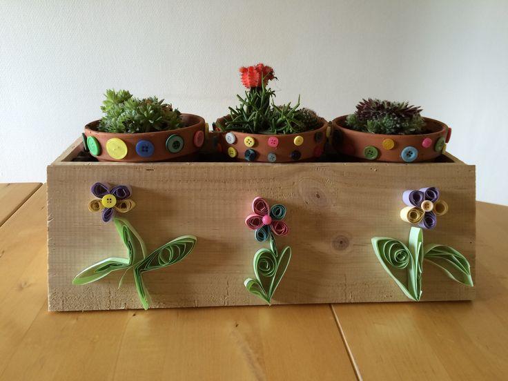 Een #houten #wijnkist omtoveren tot een #decoratieve #bloemenbakje. #knutselen #creatief #bloemen #cactus
