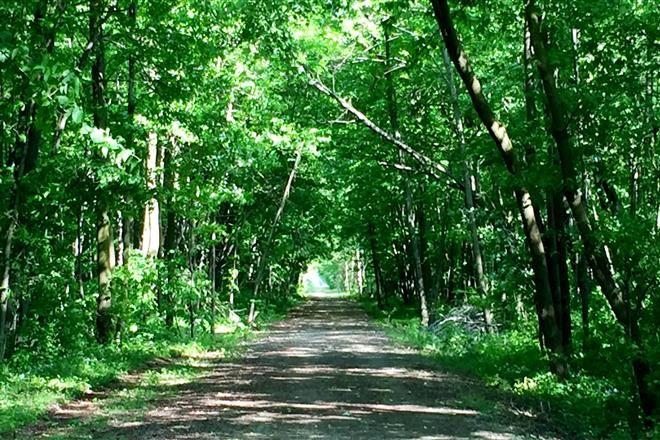 25 Best Trail Maps Ideas On Pinterest
