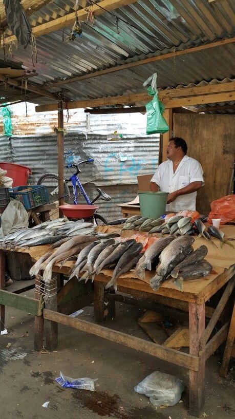 Market-Stall fish #SantaMarta #Colombia