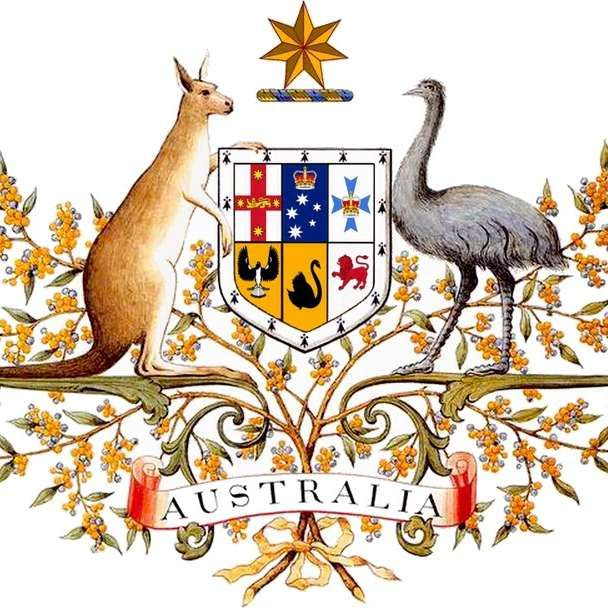 """En el escudo de armas de Australia, podemos ver un canguro y un emú enfrentados. Estos animales tienen como característica que no se retiran fácilmente, lo que simboliza el lema del país: siempre hacia adelante. El himno nacional se conoce incluso como """"Adelante Australia"""". #canguro #himno #australia #nacional #emblema #escudos #particularidad http://www.pandabuzz.com/es/anecdota-del-dia/escudos-australia-canguro-emú"""