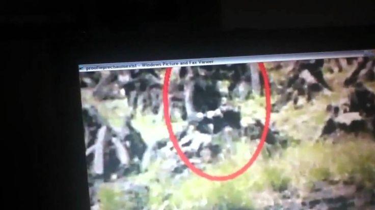 Real Leprechaun Caught On Tape | maxresdefault.jpg