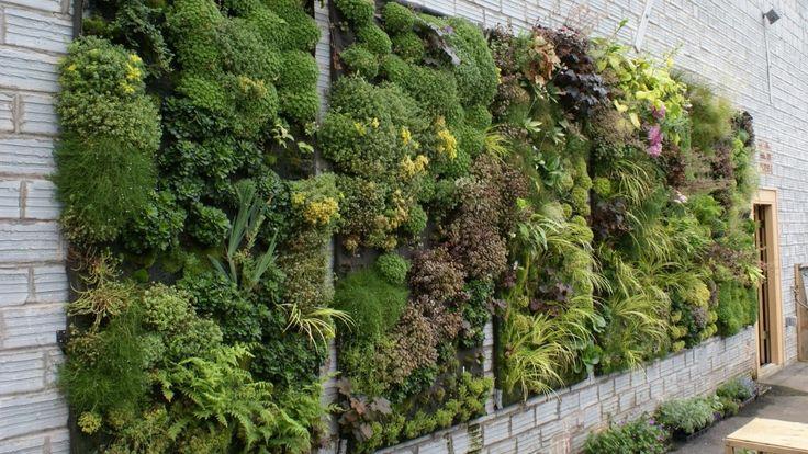 вертикальные сады и огороды своими руками: 11 тыс изображений найдено в Яндекс.Картинках