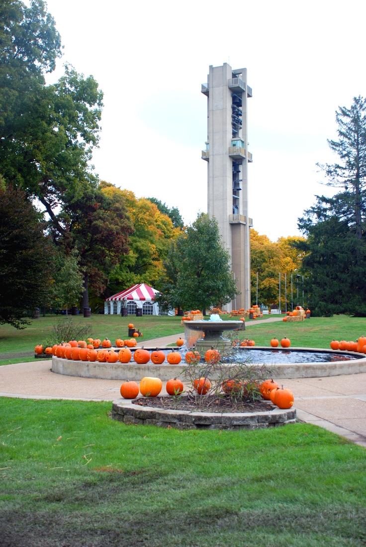 Illinois piatt county cisco - Thomas Rees Memorial Carillon Washington Park Springfield Illinois Usa