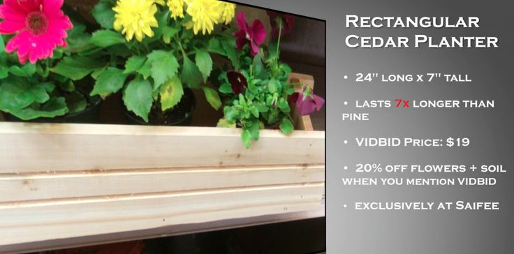 Brighten up small spaces with this sturdy cedar planted from Saifee, designed to fit in small spaces! Cedar lasts 7x longer than pine, so your planter will last season after season!