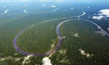 Presidente Dilma regulamenta por decreto Lei da Biodiversidade