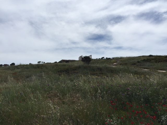 The #TempleofPoseidon on the top of the green-covered hill of #Sounio. #KeyTours #Greece