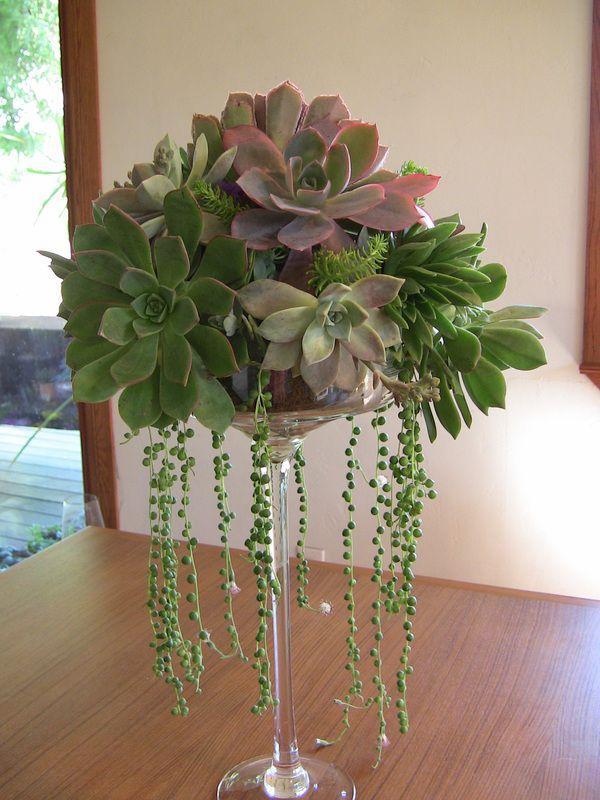 Succulent Centerpieces - Succulent Wedding Bouquets & Accessories