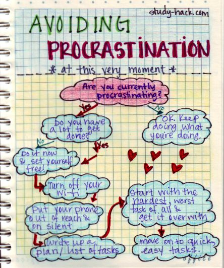 Hey you. Are you avoiding your homework right now? Here's how you can stop and get to work!   Avoiding procrastination:       Turn off your wi-fi     Put your phone out of reach and on silent     Write up a list of all the things you need to get done (make it pretty, it will make it fun and motivate you)     Start with the hardest task and get it over with     Move on to quicker and easier tasks and it will be over before you know it.  GO STUDY NOW.