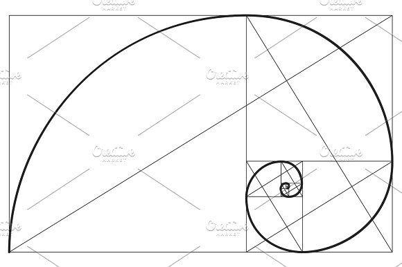 Best 25+ Golden ratio spiral ideas on Pinterest