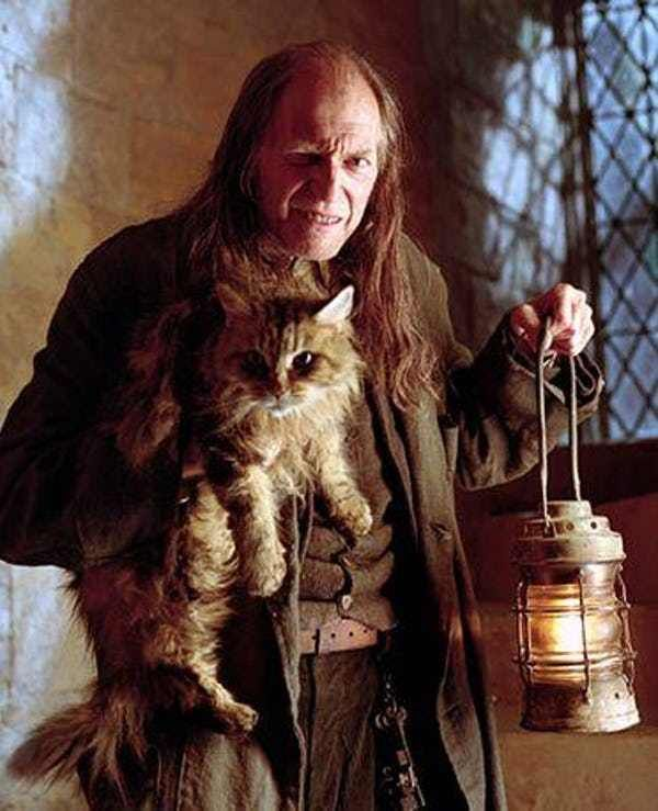 The Craziest Harry Potter Fan Theories That Could Be True Harry Potter Fan Theories Harry Potter Characters Harry Potter Fan