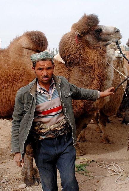 Camel Herder in Kashgar, China.