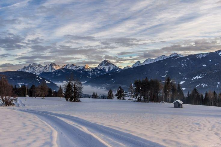 Ansteckungsgefahr - so toll sind Ferien auf dem Bauernhof in Südtirol