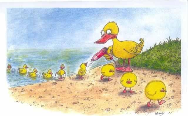 kacsák úszás után