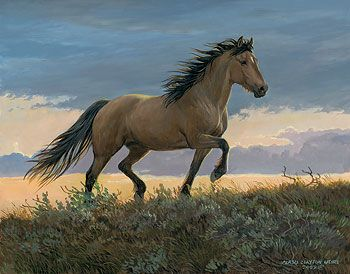 'Buckskin Stallion' by Persis Clayton Weirs Original Paintings