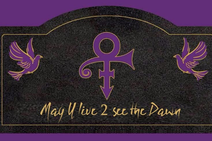 """Henderson, Minnesota is the location where the famous """"That ain't Lake Minnetonka"""" scene was filmed for Prince's iconic """"Purple Rain"""". We are raising funds to bring a memorial bench to the city to honor Prince, Purple Rain and Henderson's part in movie history. We have received the go from the..."""