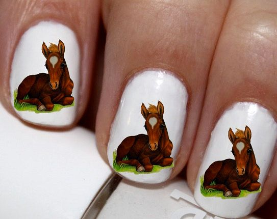20 pc Cute Baby Horse Colt And Horse Nail Art by EasyNailTrends
