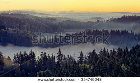 Stock Photo: Beautiful landscape of Aulanko nature reserve park in Finland. Panorama with thick fog covering the scene in the early morning.