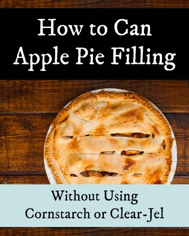 Canning Apple Pie Filling Without Clear Jel Or Cornstarch Apple Pies Filling Canning Apple Pie Filling Canning Apples