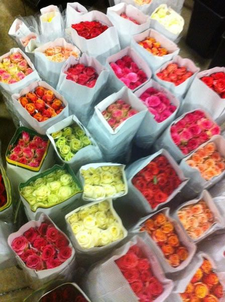 Toowoomba Flower Market