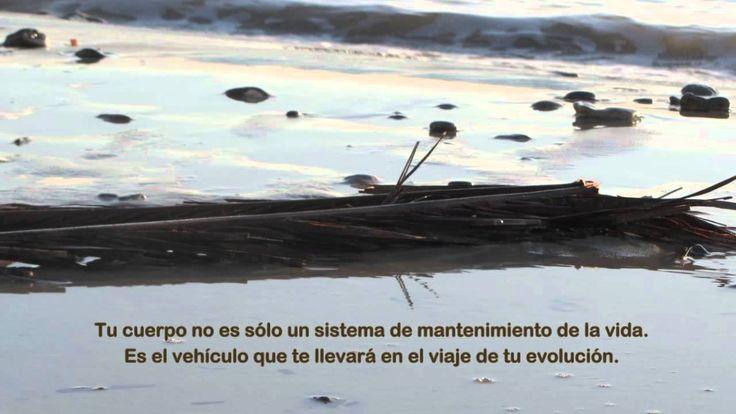 Vive el presente, es el único instante que puedes cambiar a tu antojo.  Asociación Ahire - Paco Ramos