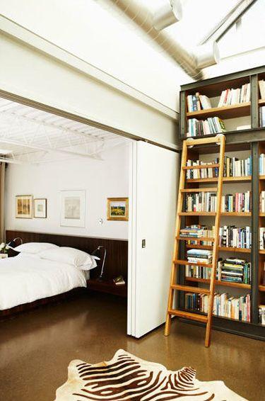 book shelf & ladder