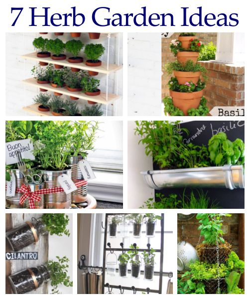 1060 best images about GaRDeN ThiNGZ on Pinterest See