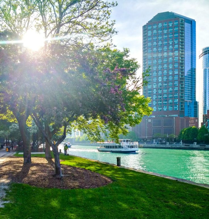 Chicago amazing things to see and do without breaking the
