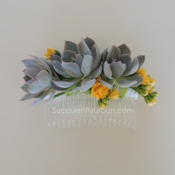 Hey, I found this really awesome Etsy listing at https://www.etsy.com/listing/215216859/succulent-hair-comb-with-white-or-pink