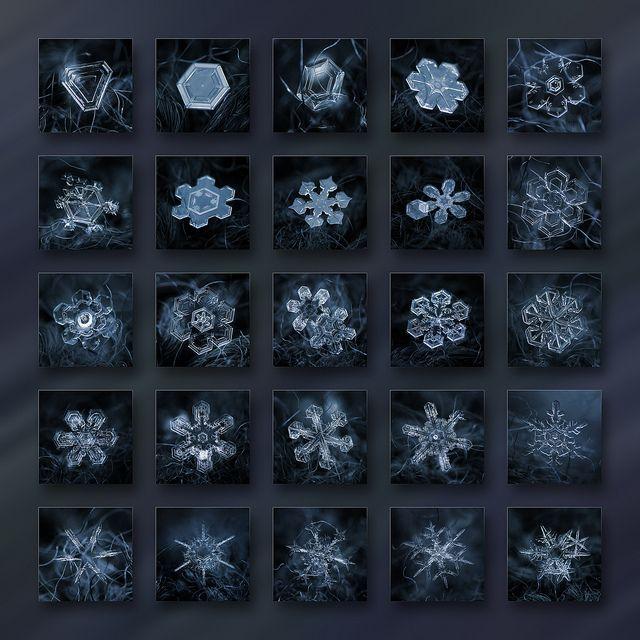 Chaque flocon de neige est (presque) unique. Cet agrégat de cristaux de glace (10 millions de fois plus petit que