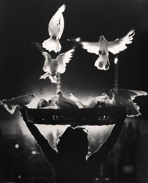 Doves - Black Circus Of Prague