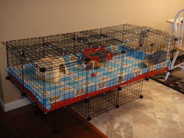 guinea pig (or hedgehog!) cage DIY cost less than $40 super cute and much bigger than pet store style. Called c cage