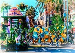 Risultato immagine per fiori brasile